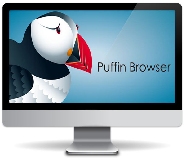 puffin-web-browser-computer