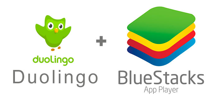 Устанавливаем Duolingo с помощью эмулятора BlueStacks.